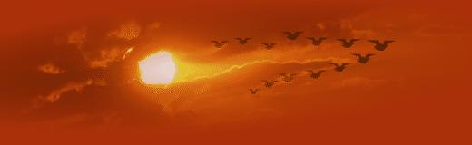 Клин перелетных чай-птиц в небе Маньчжурии..